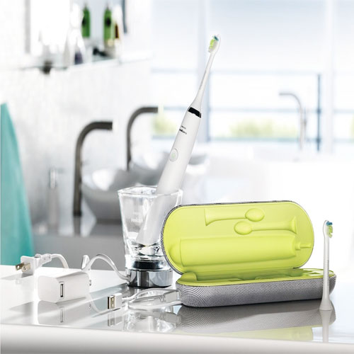 oral health basics