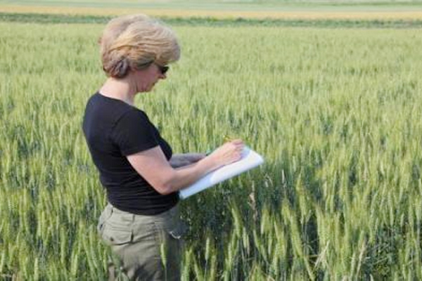 how to become an agricultural scientist