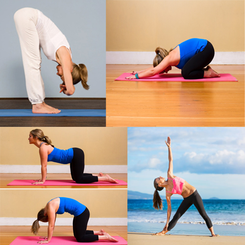 Yoga poses to relieve back pain, yoga poses to relieve back pain,  how to get rid of back pain,  exercises to get rid of back pain,  ease back pain with these yogas,  try these exercises to get rid of back problems,  ifairer