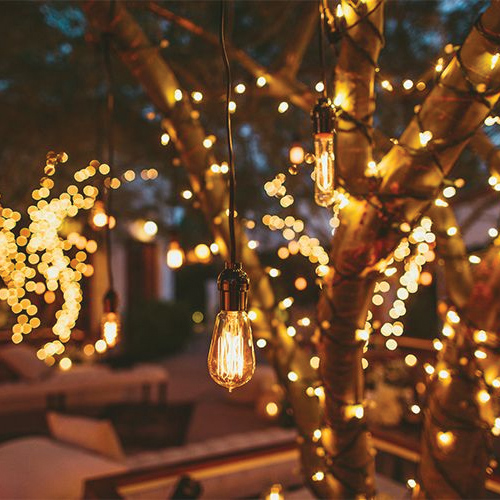 Light your garden with creative Diwali decoration ideas Slide 2 ...