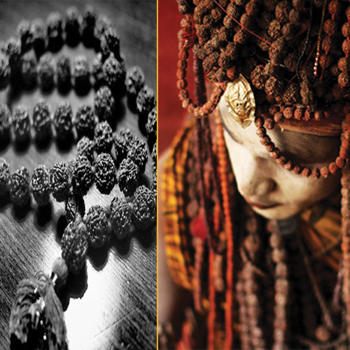 the benefits of wearing rudraksha About rudraksha and the mala  benefits of wearing a rudraksha mala rudraksha is a very helpful support because it creates a cocoon of your own energy.