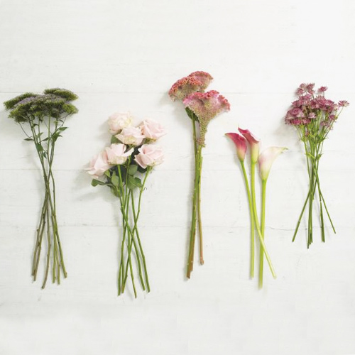 10 Vegetables Eat Once And Regrow Forever Slide 1 Ifairer Com: How To Make Beautiful Flower Bouquet In 10 Minutes Slide 2