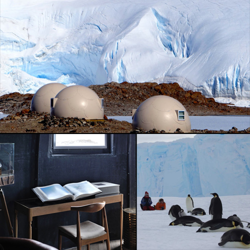 Hang Out With Penguins at Whichaway Camp in Antarctica, hang out with penguins at whichaway camp in antarctica,  breathtaking whichaway camp,  breathtaking paradise in the south pole,  whichaway camp,  travel,  ifairer