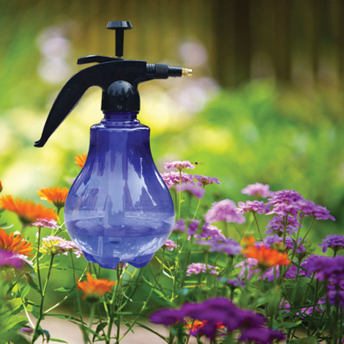 Make homemade insecticides to kill those irritating pests, how to make homemade insecticide for your backyard,  make homemade insecticides to kill those irritating pests,  homemade insecticide for your garden,  garden insecticide,  gardening,  ifairer