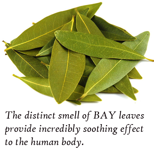 Know benefits of burning a bay leaf in your house, You will be amazed, know benefits of burning a bay leaf in your house,  you will be amazed,  burn a bay leaf (tej patta) in your home for this amazing reason,  general articles,  ifairer