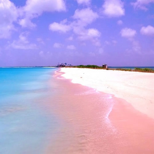 Miraculous pink beaches around the world, must visit, miraculous pink beaches around the world,  must visit,  incredible images reveal the stunning pink beaches around the world,  wonderful pink beaches in the world,  the most beautiful pink sand beaches in the world,  destinations,  travel