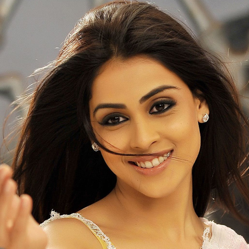 Things to know Genelia D'Souza better, birthday special, unknown facts about genelia dsouza,  interesting facts and figures genelia dsouza,  facts about genelia dsouza,  genelia dsouza,  bollywood news,  bollywood gossip,  latest bollywood updates