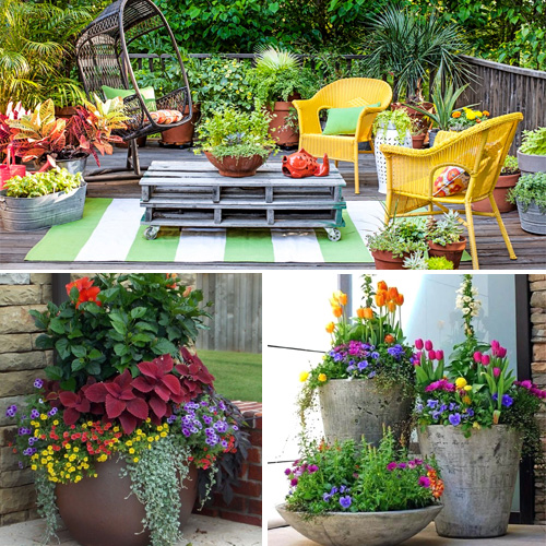 How to care for potted plants in winter, how to care for potted plants in winter,  winter care tips for pot plants,  how to protect potted plants in winter,  winter care for houseplants,  gardening,  decor tips,  ifairer