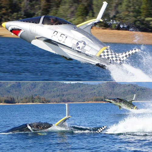 Amazing torpedo speedboat can catapult you across the waves, amazing torpedo speedboat can catapult you across the waves,  incredible torpedo speedboat that is part submarine,  fighter jet,  new invention,  automobiles,  technology,  ifairer