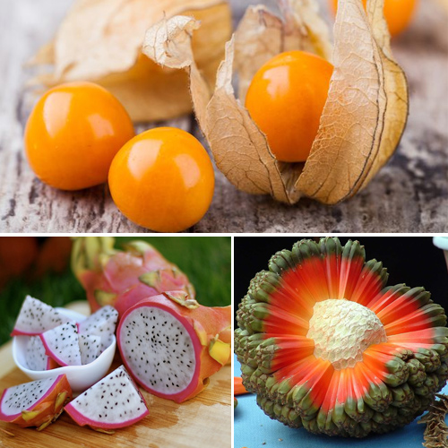 10 Exotic fruits you have probably never heard before, you should try once