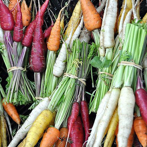 Healthy veggies and herbs to grow in garden, healthy veggies and herbs to grow in garden,  foods to grow in garden,  easy vegetables to grow,  gardening,  home garden,  ifairer