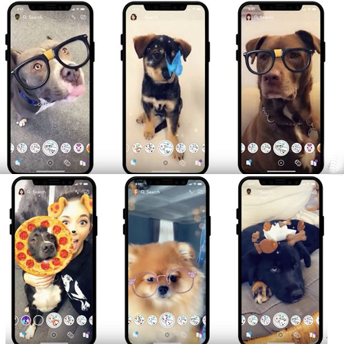 Snapchat adds new feature: Filters for your DOG