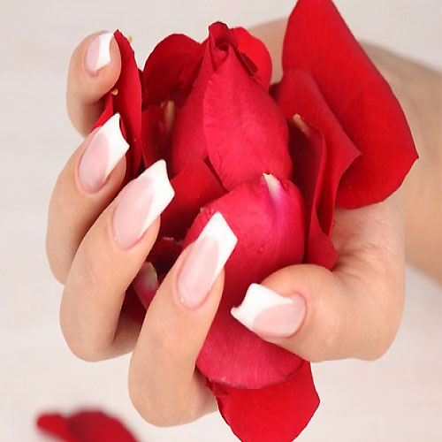 Add rose water and petals in daily routine and boost your beauty, valentine day,  add rose water & petals in daily routine and boost your beauty,  beauty benefits of rose,  natural beauty benefits of roses,  health and beauty benefits of roses,  uses of rose to get natural beauty,  rose skin care,  rose day special,  skin care,  ifairer