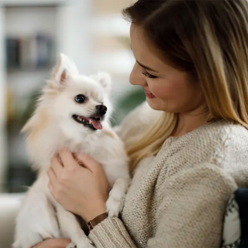 Study: Dog at Home Means Longer Life, Better Heart Health , study,  dog at home means longer life,  better heart health,  research,  dog,  heart health,  health care,  health tips,  ifairer