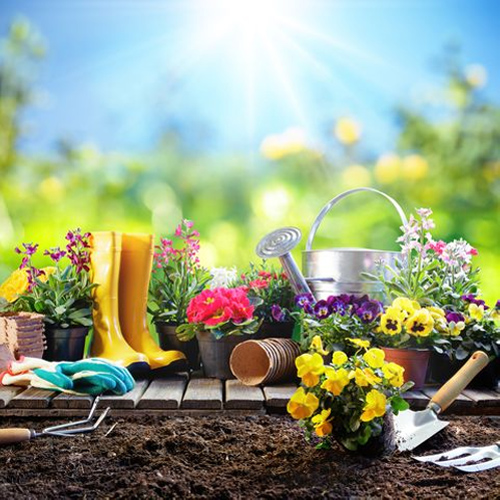 5 Vastu tips to attract good fortune with a garden at home, 5 vastu tips to attract good fortune with a garden at home,  vastu tips for garden,  vastu shastra tips for garden,  vastu and garden,  vastu tips,  ifairer