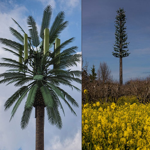 7 Bizarre cellphone towers that will amaze you, 7 bizarre cellphone towers that will amaze you,  cell towers of america,  amazing tree like cell tower,  destinations,  travel,  places,  ifairer