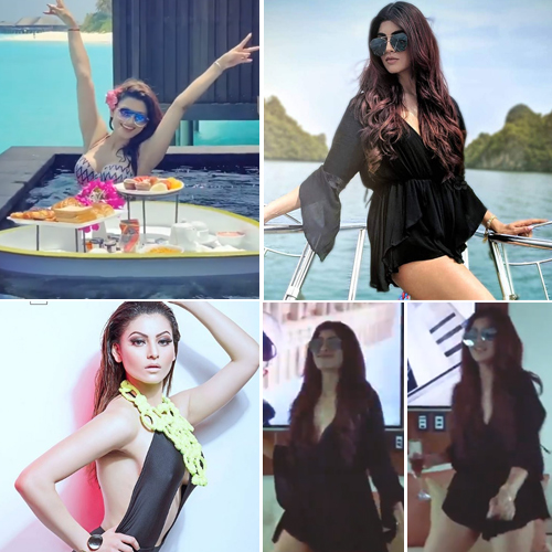 Akanksha Puri's killer dance moves and Urvashi Rautela's bikini pics will take away your quarantine blues