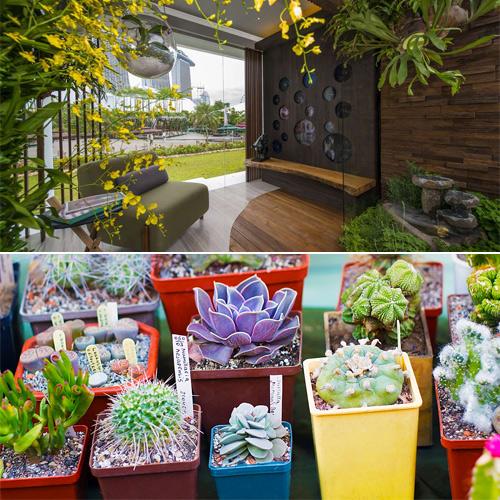 7 Ideas to make your garden according Vastu and bring happiness in house, 7 ideas to make your garden according vastu and bring happiness in house,  vastu tips,  gardening,  vastu shastra,  ifairer