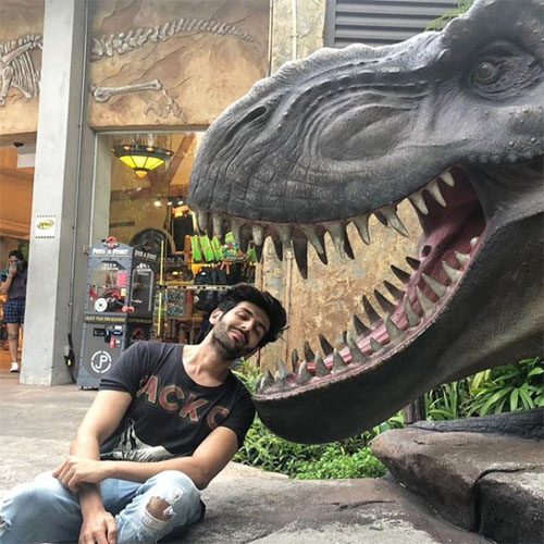 Dino Boy Kartik Aryan Shared A New Insta Post: Check Out What It Is, kartik aryan,  covid-19  india,  bollywood