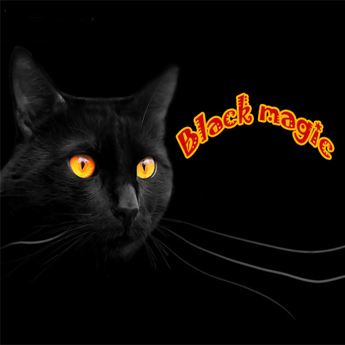 5 Things to know about black magic, 5 things to know about black magic,  things to know about black magic,  interesting facts about black magic,  amazing acts about black magic,  black magic,  general articles,  ifairer
