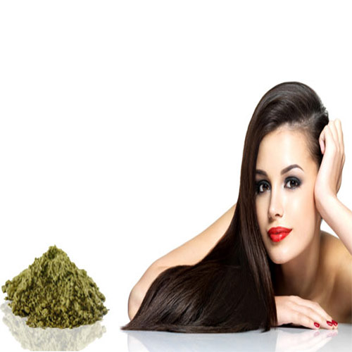 5 Best uses of HENNA.., henna,  most beneficial herbs,  wonders for your hair,  more benefits of henna,  henna care,  henna hair care,  hair care,  coloring hairs,  conditioning hairs,  hairs,  long hairs,  remedies of henna,  scalp health,  health,  hair care,  beauty and health