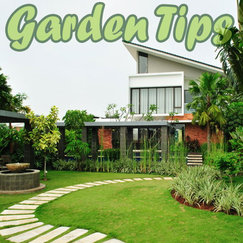 5 Feng Shui Tips for garden, 5 feng shui tips for garden,  feng shui,  decor,  home decor,  vastu,  gardening,  latest news,  ifairer