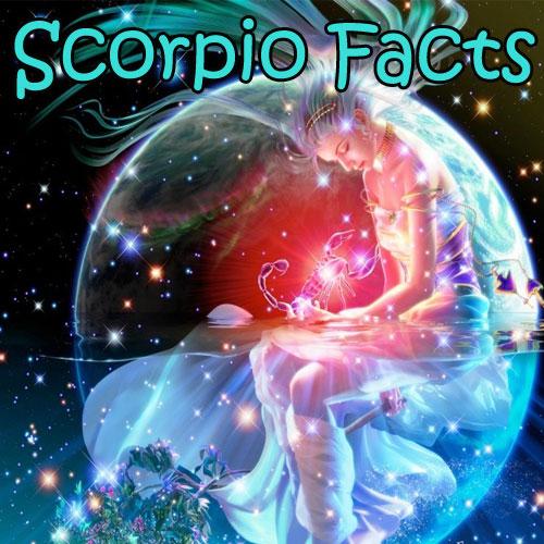 5 Unique facts of Scorpio, 5 unique facts of scorpio,  astrology,  numerology,  zodiac,  latest news,  ifairer,  scorpio,  zodiac sign