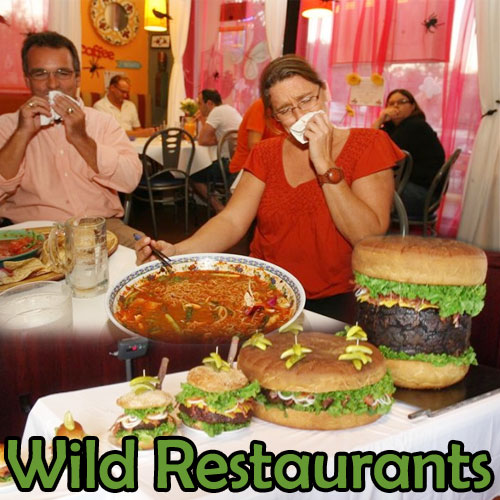 5 Wild restaurants of the world, 5 wild restaurants of the world,  travel,  hotels / resorts,  cuisines,  destinations,  latest news,  ifairer