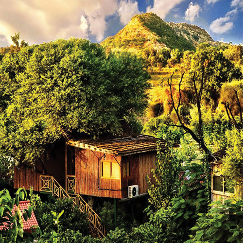 6 Magical Tree House Resorts in India, 6 magical tree house resorts in india,  tree house hotels in india,  tree house resort,  best tree houses in india,  romantic tree house resorts in india,  hotels,  resorts,  travel,  ifairer