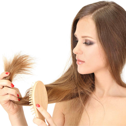 7 Home remedies for split ends, 7 home remedies for split ends,  home remedies for split ends,  how to cure split ends at homes,  ways to cure from split ends,  hair care,  ifairer