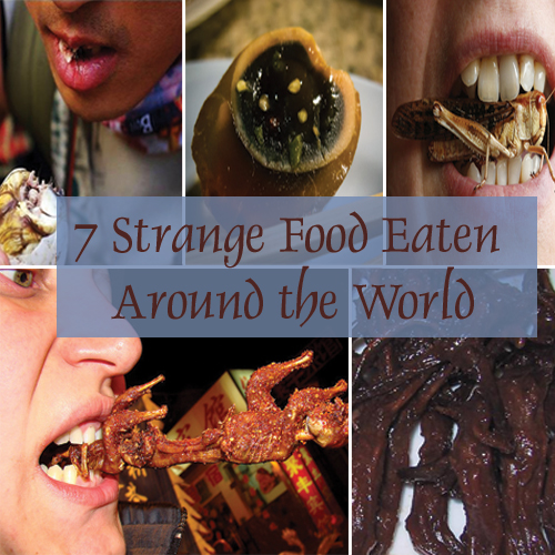 7 strange food eaten around the world, 7 strange food eaten around the world,  freakiest food habits in the world,  unusual food habits,  weirdest food habits in the world,  bizarre food eaten around the world,  worlds disgusting food,  travel,  cuisines,  ifairer