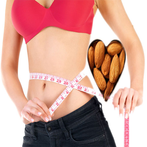Almonds Reduce Belly Fat, almonds reduce belly fat,  consuming almonds could reduce belly fat,  health tips,  almonds reduce belly fat,  reports study,  almonds could reduce belly fat,  eat almonds and say goodbye to belly fat,  health care,  ifairer