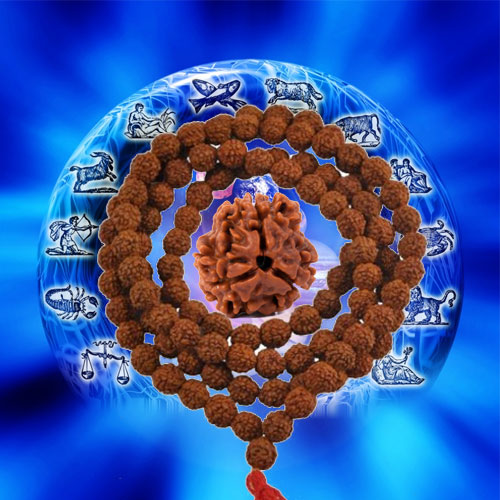 Effect of Rudraksha for Mangliks, effect of rudraksha for mangliks,  effect of 3 mukhi rudraksh,  how to get rid of manglik dosh,  manglik dosh,  astrology,  astro articles,  numerology,  zodiac