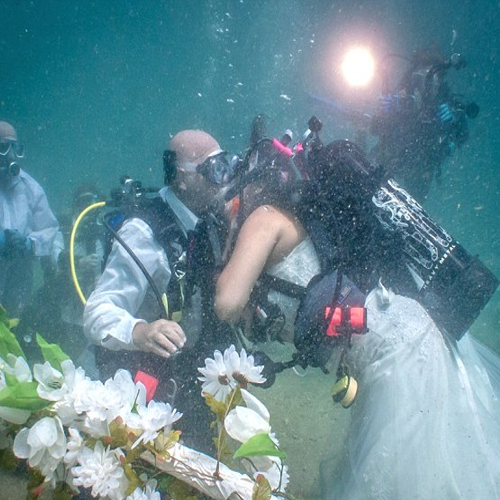 How Deep Is Your Love?, wedding underwater,  wedding between sharks,  sharks,  ocean,  wedding,  underwater,  love,  love marriage,  american couple,  undersea ceremony,  scuba diving,  marriage,  atlantic ocean,  florida,  ifairer