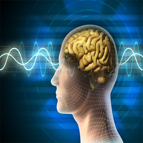 How Do Our Brainwaves Influence Us?, brain wave ,  brain waves,  health,  health tips,  brain health,  health science,  health researches,  make decisions,   beta brain wave,  alpha brain waves,  muscle tension,  high blood pressure,  anxiety and exhaustion,  concentration