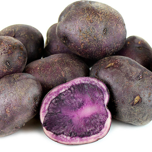 Purple potatoes prevent colon cancer