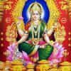 Worship Goddess Lakshmi