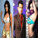 15 contestants of Bigg Boss 8