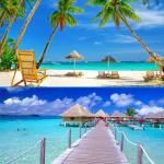 Why Goa is an amazing places to visit, popular tourist places
