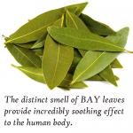 What happens if you burn a bay leaf in your home