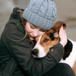 Study: Having dog as pet may result in healthier heart