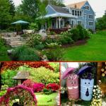 5 Garden design ideas to make more attractive