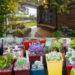 7 Ideas to make your garden according Vastu and bring happiness in house