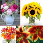 5 Romantic flowers to grow at your home garden