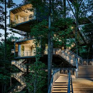 The world's most amazing tree-houses