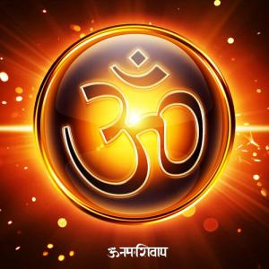 What does the Om symbol mean