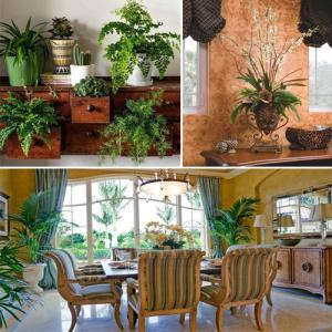 Maintain house decorum with artificial plants