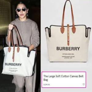Anushka Sharma flaunts a costly handbag, amount can fund your solo trip to Singapore