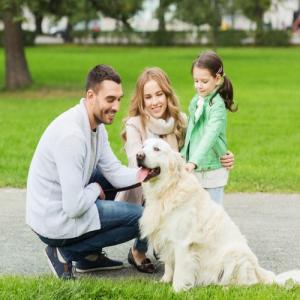 Study: Dog at Home Means Longer Life, Better Heart Health