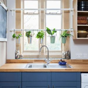 7 Ways to add plants to your kitchen